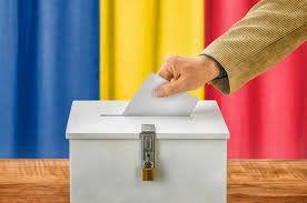 Inca o problema pentru PNL. Comisia de la Venetia recomanda evitarea schimbarii legislatiei pentru alegerile locale