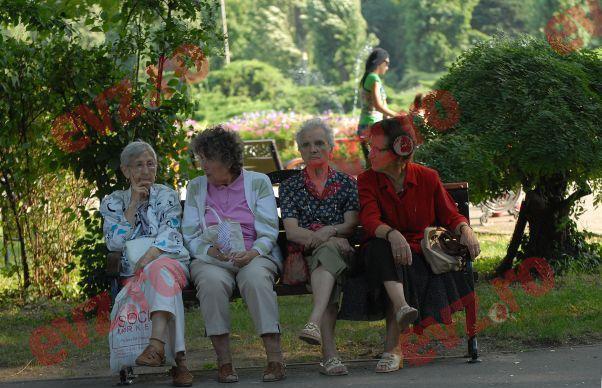 Ce pensionari au dreptul sa munceasca