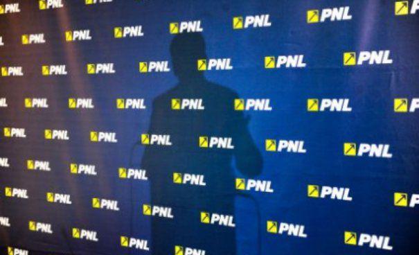 PNL a validat alte 19 candidaturi pentru alegerile locale