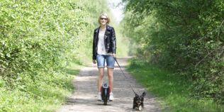 Avantajele mijloacelor de transport care ne fac drumurile zilnice mai relaxante: alternative pentru care merita sa lasi masina acasa