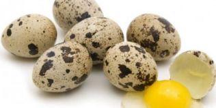 De ce sunt mai bune ouale de prepelita decat cele de gaina
