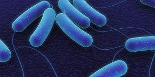 De ce am devenit rezistenti la antibiotice si antimicrobiene