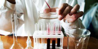 Sfere celulare asemanatoare embrionilor au fost obtinute din celule stem de soareci. Ce implicatii are noua descoperire